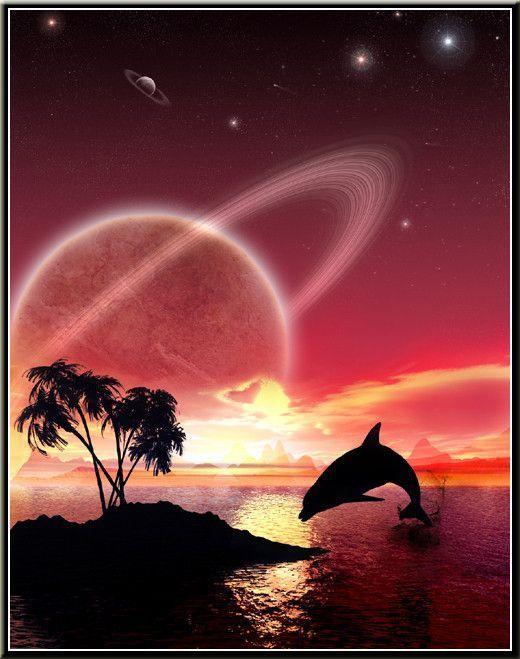 gifs dauphin
